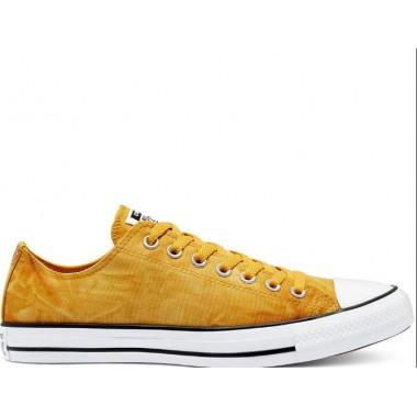 Converse Summer Daze Chuck Taylor All Star Low Top